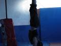 équilibre sur main cours adultes à Oreka