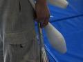 massues cours adultes jonglerie à Oreka